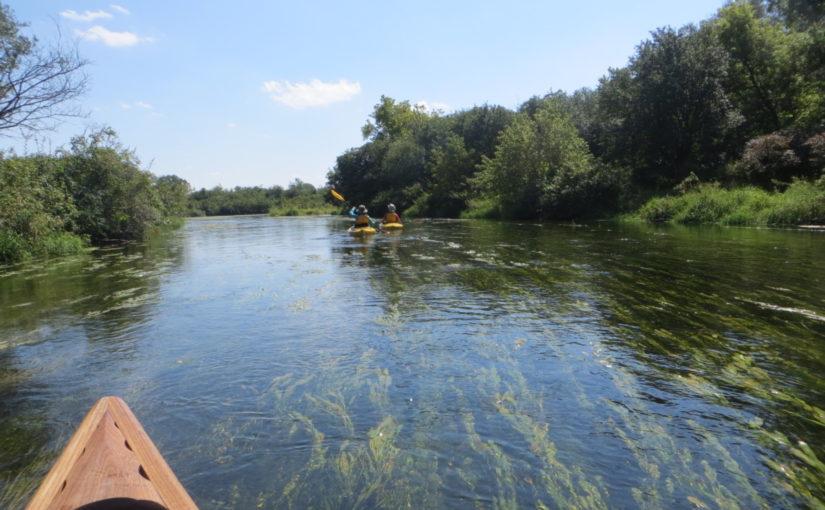 Turtle Creek on Labor Day