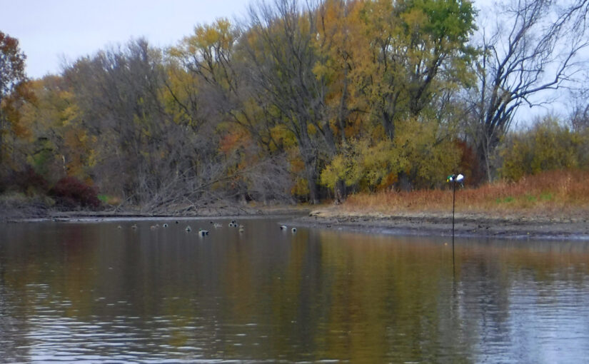 Chilling on the Rock River (North of Kaul Park)